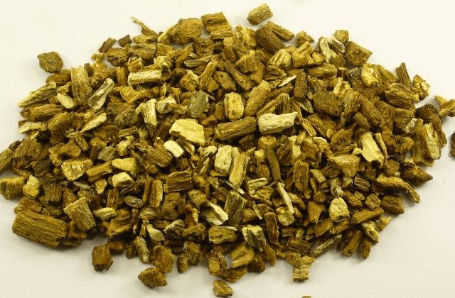 Klitwortel